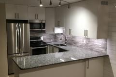 Kitchen Condo Remodel